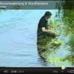Durchführung einer Gewässeruntersuchung