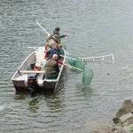 Elektrofischerei vom Boot