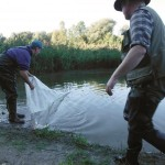 Bauanleitung für Kleinfisch-Zugnetz