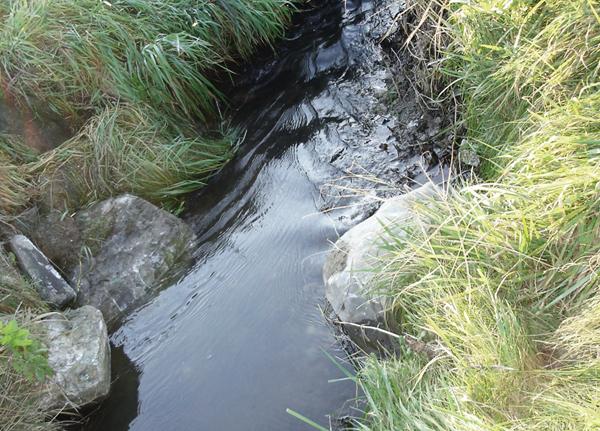 Renaturierung kleiner Fließgewässer mit ökologischen Methoden - Störsteine