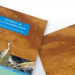 Totholz in Fließgewässern – Empfehlungen zur Gewässerentwicklung