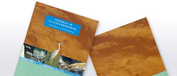 Totholz in Fließgewässern - Empfehlungen zur Gewässerentwicklung